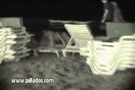 صورسكس حصان متحرك معابنات