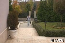 فيديوهات بورنو عربي نيك انثى الحيوان